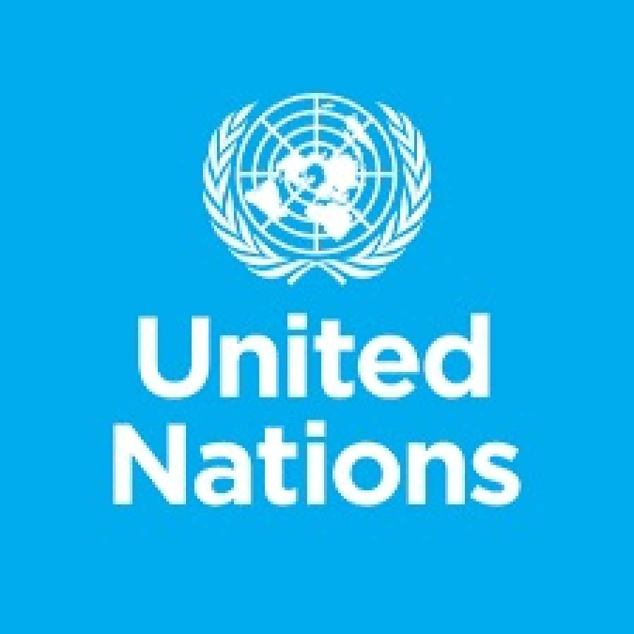 Professor Philip Alston, The UN's Special Rapporteur on