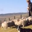 Welsh Weekly Earnings Lowest in The UK