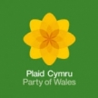 Plaid Cymru's Annual Conference in 2019