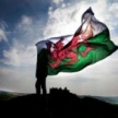 Welsh Labour Force Survey Estimates for The Three Months to June 2019